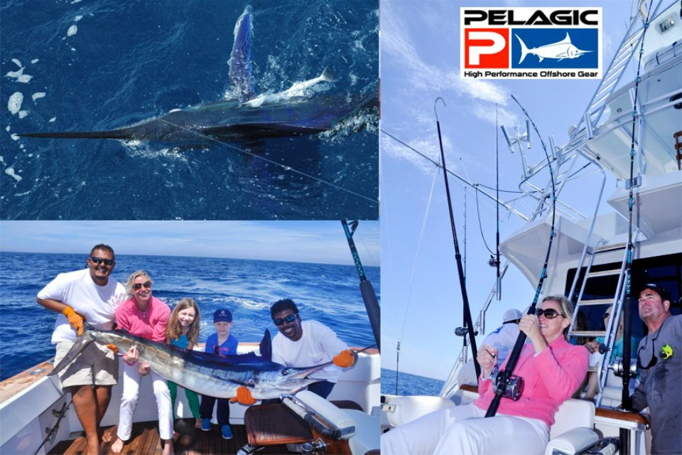 Outpost sport fishing trips mexico coastal bc salmon for Marlin fishing charters